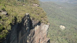 Photo of Sydney Blue Mountains Nature and Wildlife Day Tour from Sydney SAM_4356