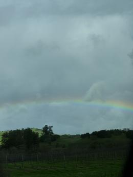 Another view of the great rainbow., Kelly G - February 2010