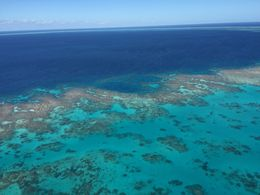 We were flying in a helicopter over part of the Great Barrier Reef. , Nigel - August 2015