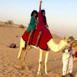 Camel riding in the desert , Marnita H - March 2015