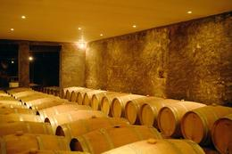 Photo of Bordeaux Bordeaux Vineyards Wine Tasting Half-Day Trip cellar at Taillan