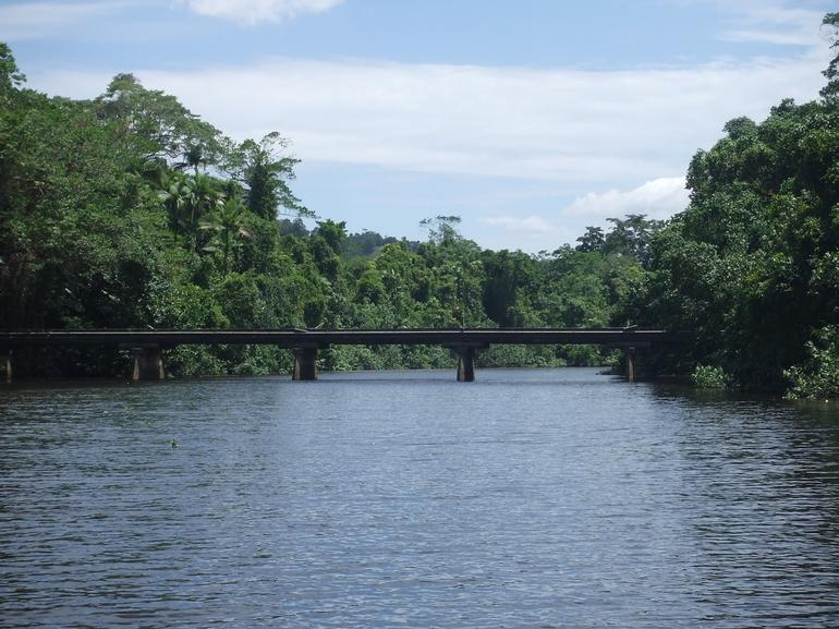Daintree River - Cairns & the Tropical North
