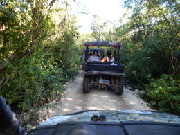 An average trail - some were tighter and narrower, some were more wide-open. , Jeremy K - March 2015