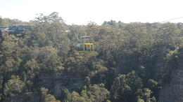Photo of Sydney Blue Mountains Nature and Wildlife Day Tour from Sydney SAM_4364