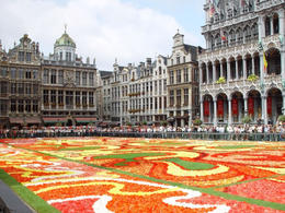Central square (Grand-Place) in Brussels, with flower carpet. A total of 700,000 begonias used for an impressive 300 m2 carpet - June 2011