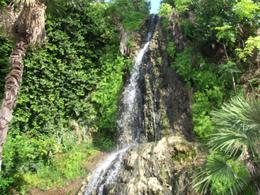 Pretty little waterfall in the tea garden. , Jennifer W - April 2011