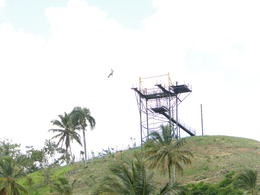 Photo of Punta Cana Punta Cana Zipline Canopy Adventure Wahoooooo!