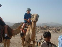 Our youngest son, he loved every minute, he kept stroking the camels heads and saying to them 'you alright mate' like they were going to answer back. - April 2008