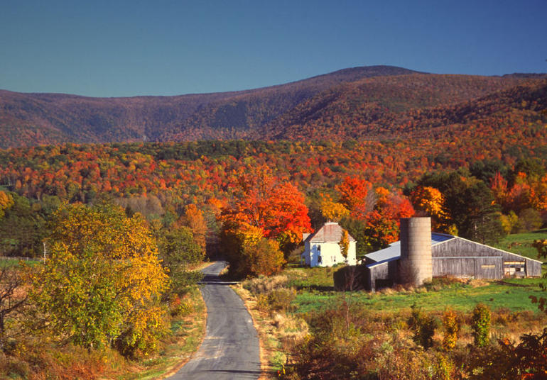 Fall foliage in the Berkshires region of Massachusetts - Boston