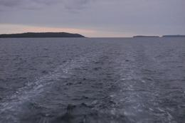 Photo of Sydney South Coast Day Trip from Sydney with Jervis Bay Dolphin Watching Cruise Jervis Bay Dolphin Cruise