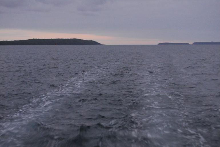 Jervis Bay Dolphin Cruise - Sydney