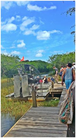 Photo of Miami Miami Combo Tour: City Sightseeing, Biscayne Bay Cruise and Everglades Airboat Ride Miami Combo Tour