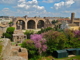 Photo of Rome Civitavecchia Shore Excursion: Rome in One Day Private Tour Roman Forum