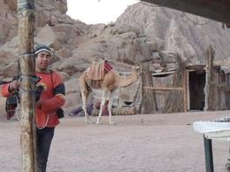 Available at the Bedouin village., Wendy B - January 2009
