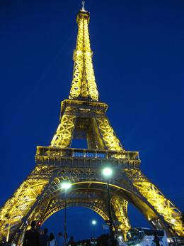 I was on the Parisian Cruise when the lights went on. And it kept blinking when we arrived at the port. We were so lucky! - August 2009