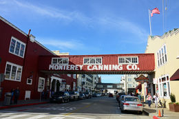 snap shop of Monterey downtown! , Diana E - February 2016