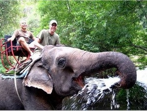 Elephant Camp of Kodanad and Athirapalli Waterfalls Day Trip from Kochi