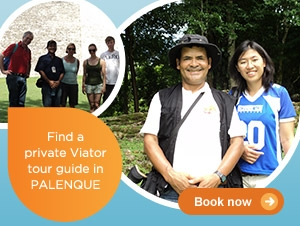 Viator Guides in Palenque