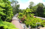 Riding the Kuranda Scenic Railway