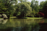 English Garden (Englischer Garten) in Munich