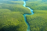Natural Wonders of the Amazon
