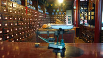 Museum of Traditional Chinese Medicine (Hu Qing Yu Tang Chinese Medicine Museum)