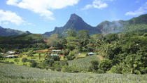 Visiting the Moorea Plantations