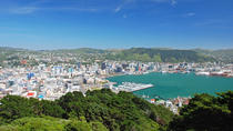 Wellington Cruise Port