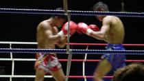 Pounding Muay Thai Action
