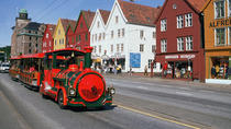 Day Trips from Oslo