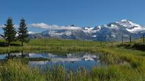 Bernese Oberland Day Trips