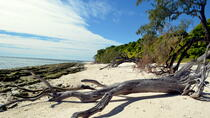 Lady Musgrave Island