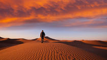 Exploring the Namib Desert