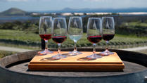 Wine Tasting in Australia and New Zealand