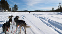 Winter Sports in Lapland