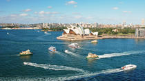 Top 5 Sightseeing Cruises