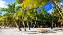 Day Trips to Saona Island from Punta Cana