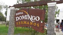 Bodega Domingo Hermanos