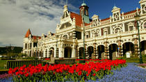 Dunedin & Otago Peninsula Suggested Itineraries