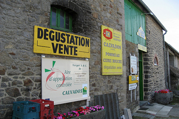 Drinking Cider in Normandy