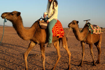 Morocco Tours from Costa del Sol