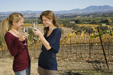 Sonoma Top Wineries