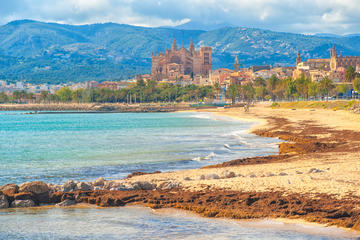 The Beaches of Mallorca