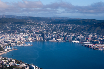 Wellington From Above
