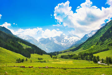 Day Trips from Salzburg
