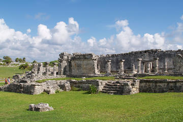 Day Trips from Cozumel