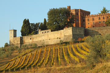 Wine Tasting from Siena
