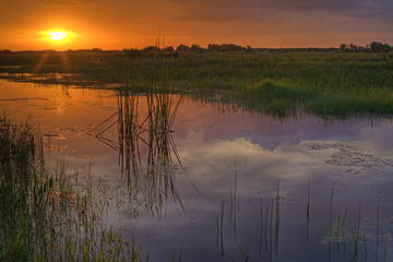 3 Days in the Everglades National Park: Suggested Itineraries