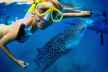Outdoor Activities and Adventure in Cancun