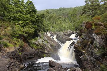 Rogie Falls, Scottish Highlands